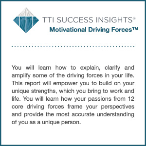 TTI Success Insights® Motivational Driving Forces™ assessment product description
